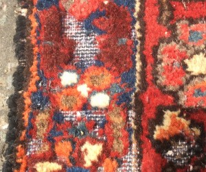 Rug Damage - Moth Treatment Required