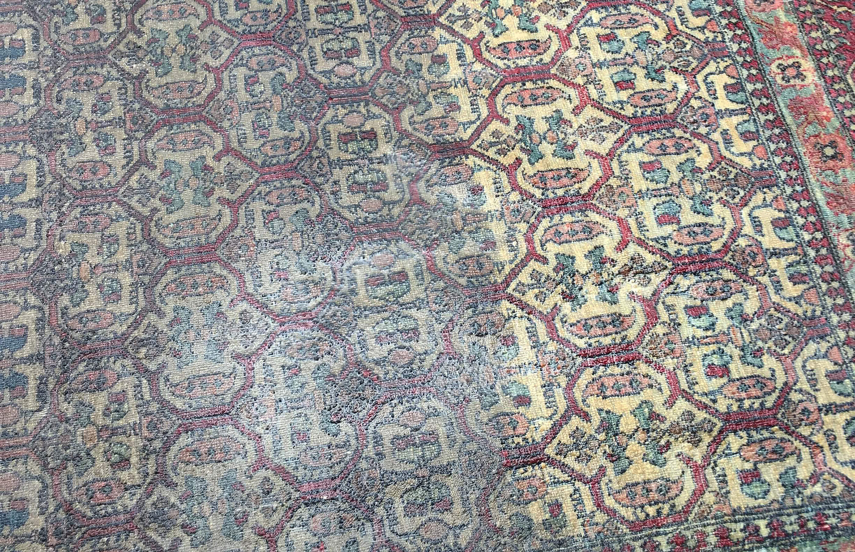 specialist rug cleaning in London