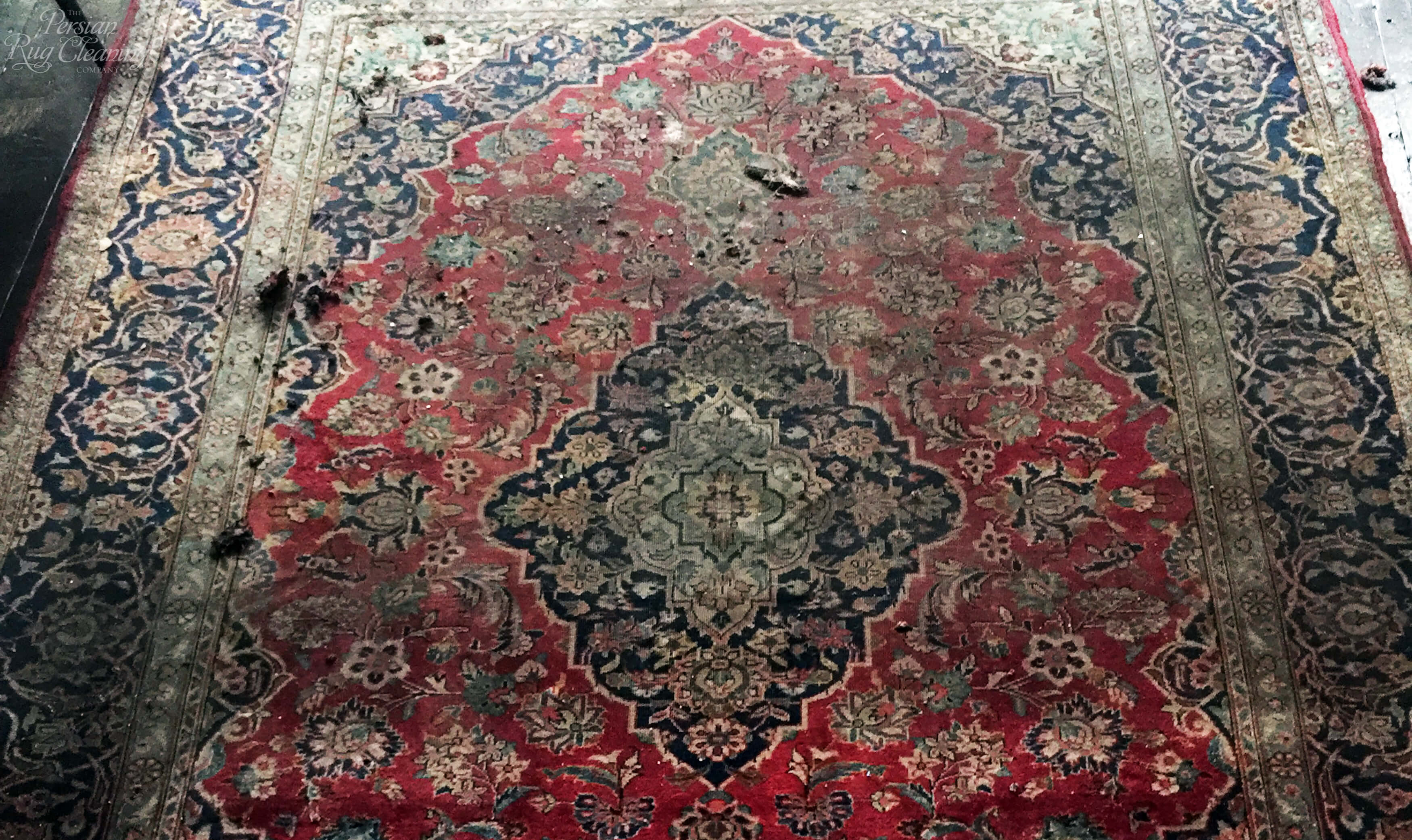 How Often Should I Clean My Persian Rug Care Knowledge
